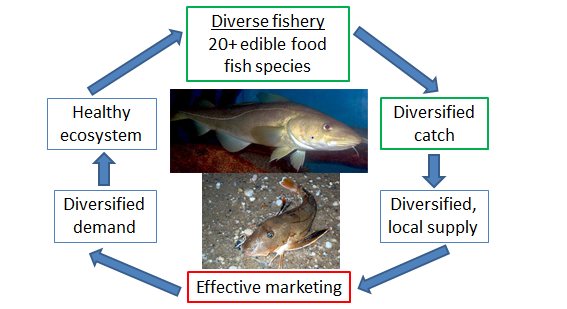 Diverse Fishery Diagram